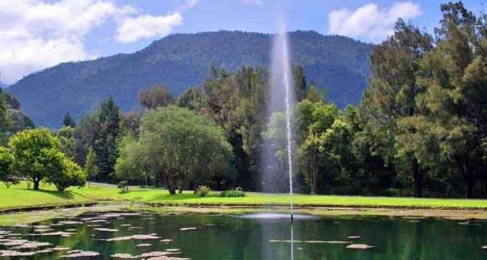 Kebun Raya Cibodas di Cianjur, Jawa Barat. Foto: Alam Priangan