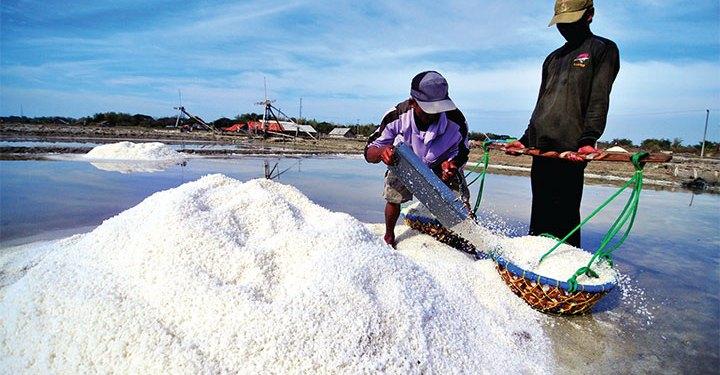 Petambak garam. Foto: Media Indonesia