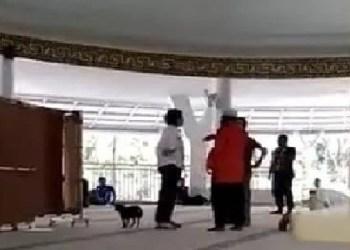 Wanita bawa anjing ke dalammasjid. Foto: Rhio/Islampos