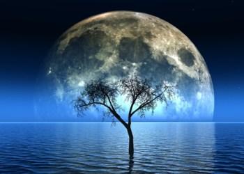bulan apit