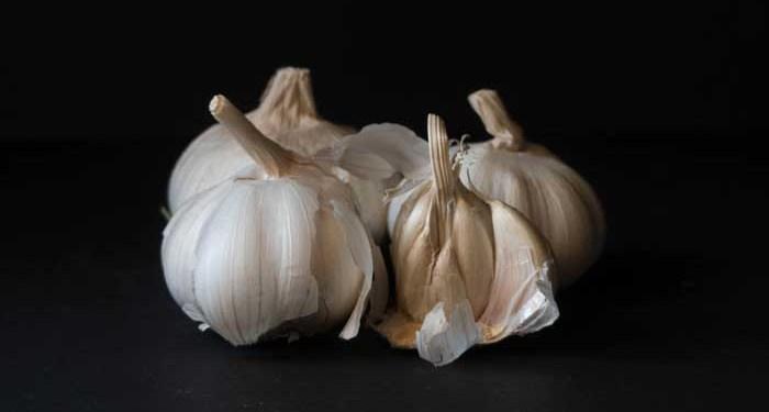Bawang putih. Foto: Unsplash