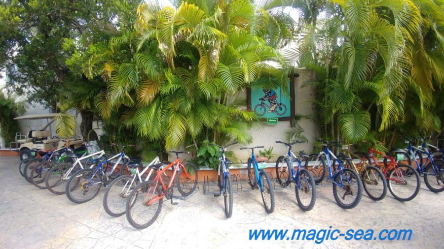 Bycicle at Beach Club Isla Mujeres