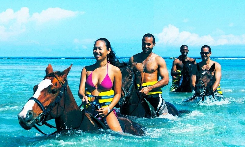 horseback adventures in jamaica