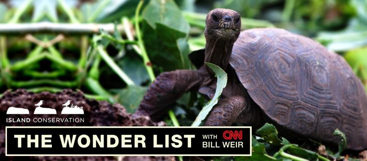 Island Conservation CNN Galapagos Karl Campbell