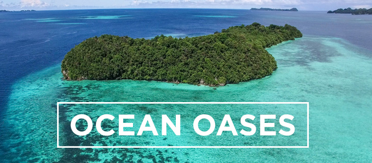 island-conservation-preventing-extinctions-ocean-oases-feat