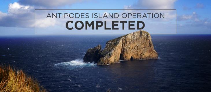 Island Conservation antipodes island new Zealand million dollar mouse
