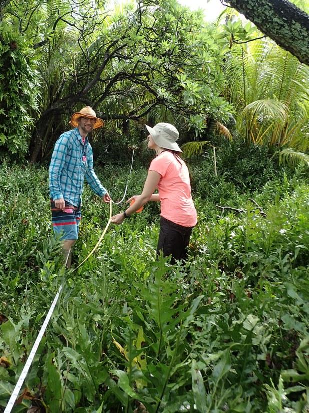 Island Conservation Fieldwork on Palmyra Atoll