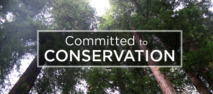 island-conservation-preventing-extinctions-committed-to-conservation-feat