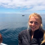 island conservation julia dunn whale tail