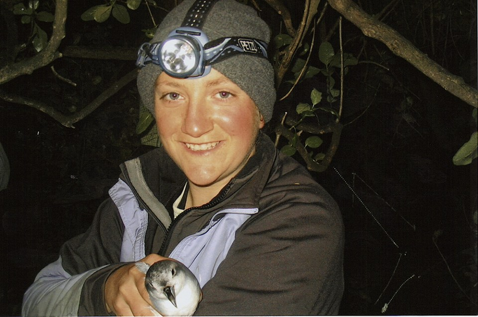 island-conservation-preventing-extinctions-holly-jones-STEM-bird