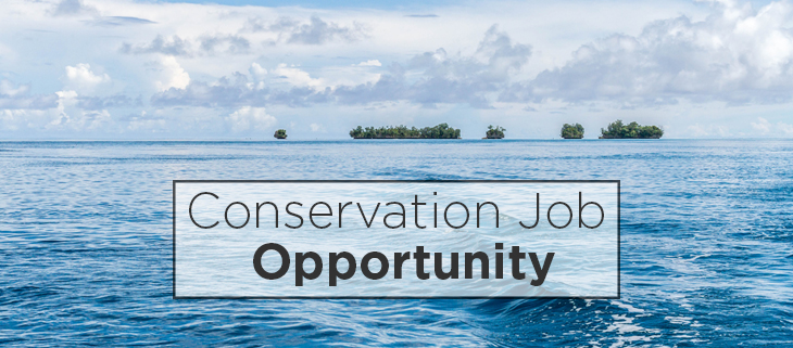 island-conservation-preventing-extinctions-job-opportunity-feat
