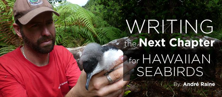 island-conservation-preventing-extinctions-andre-raine-hawaiian-seabirds-feat