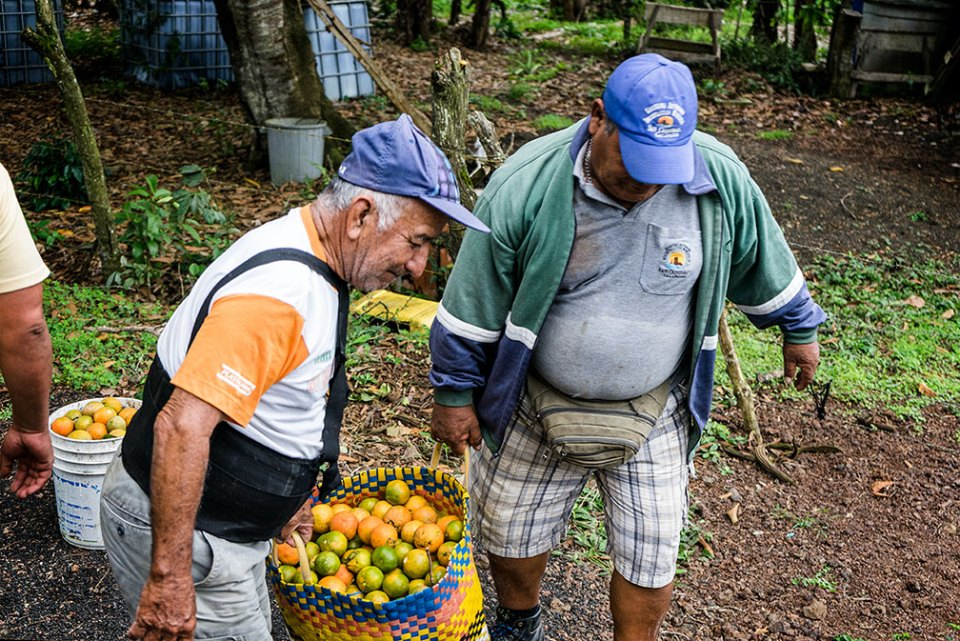 Island conservation preventing extinctions galapagos ecuador floreana carolina torres trueba