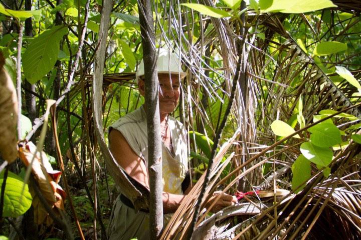 island-conservation-preventing-extinctions-Deacon-Tobia-tenarunga
