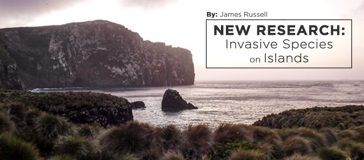 island-conservation-preventing-extinctions-james-russell-research-invasive-species-feat