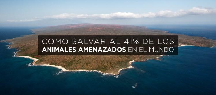 island-conservation-preventing-extinctions-threatened-island-biodiversity-database-feat