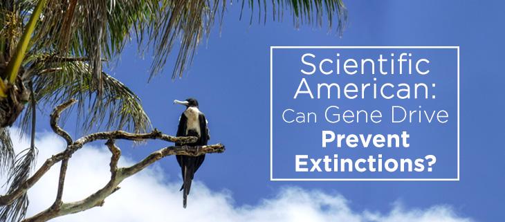 island-conservation-gene-drive-feat