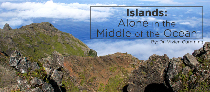 island-conservation-islands-isolation-feat