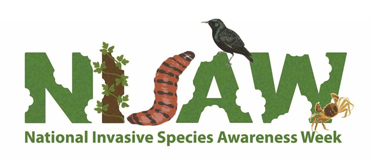 island-conservation-invasive-species-preventing-extinctions-awareness-week-feat