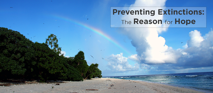 island-conservation-preventing-extinctions-invasive-species-palau-hope-feat