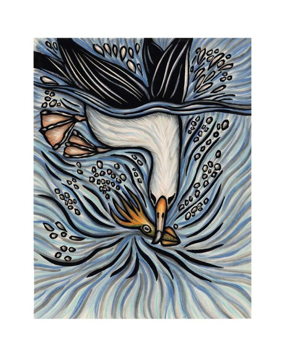 island-conservation-invasive-species-preventing-extinctions-caren-loebel-fried-albatross-diving
