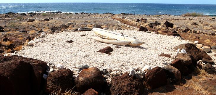 island-conservation-invasive-species-preventing-extinctions-kaho'olawe-navigation