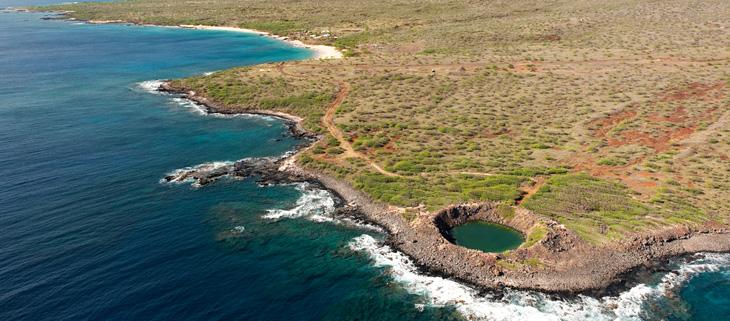 island-conservation-invasive-species-preventing-extinctions-kahoolawe-sailors-hat-feat