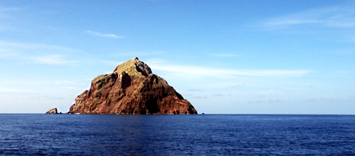 island-conservation-invasive-species-preventing-extinctions-goats-impact-redonda-island-feat