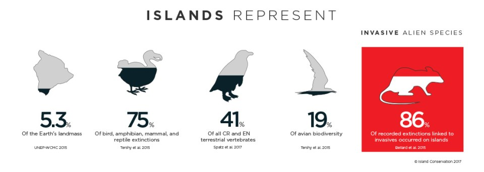 Island Conservation palmyra Atoll coral wolf infographic