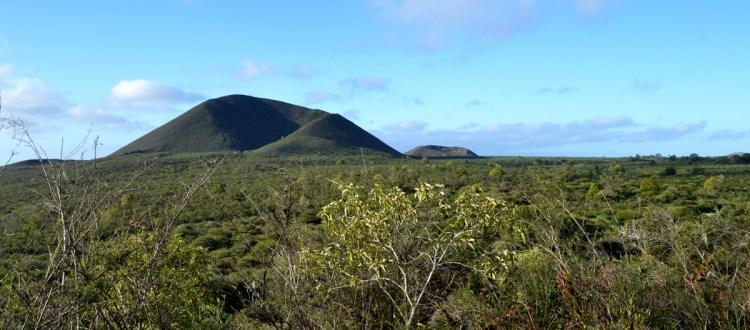 island-conservation-invasive-species-preventing-extinctions-Floreana-island-restoration-project-galapagos