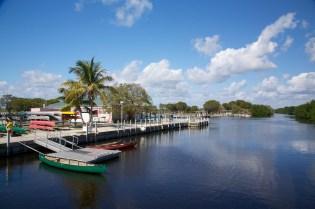 Everglades  010