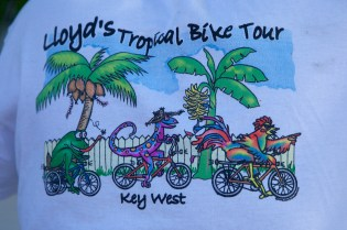 Lloyds Bike Tour  001