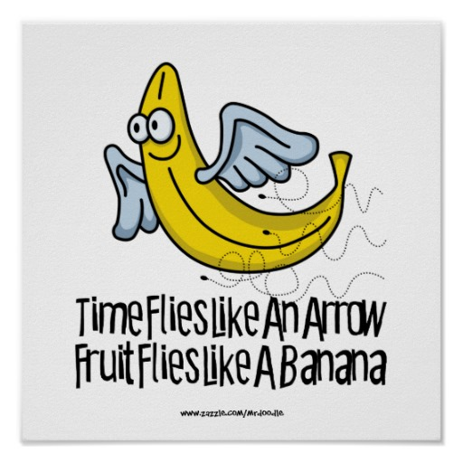 fruit_flies_like_a_banana_print-re20126760c2a4258b2bee7c886447c75_wvk_8byvr_512