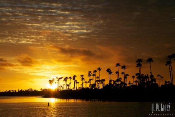 San Diego Beaches  035