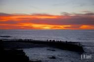 San Diego Beaches 045