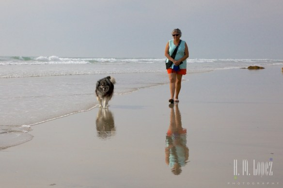 San Diego Beaches  061