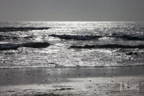 San Diego Beaches 071