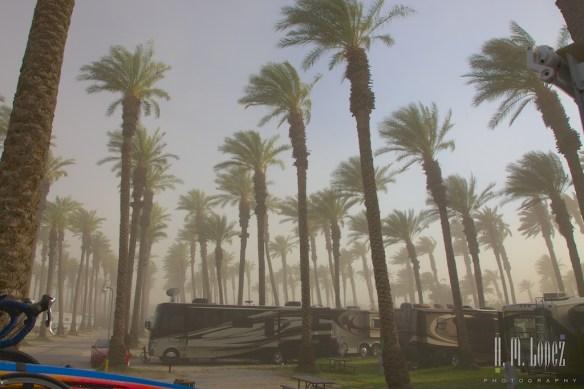sandstorm  003