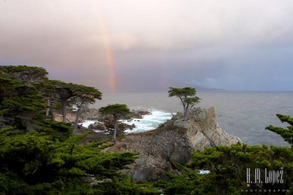 Monterey  025
