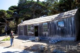 Point Lobos  009