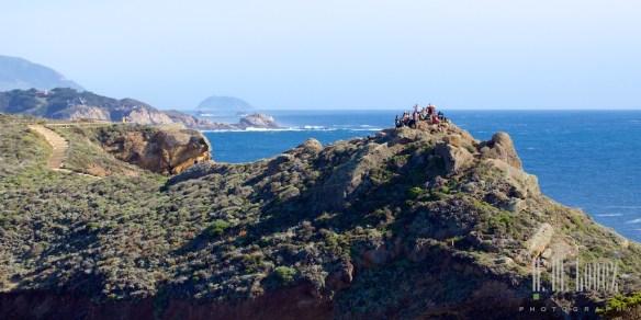 Point Lobos  028
