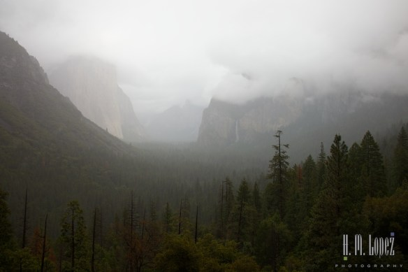 Yosemite Valley  049