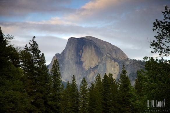 Yosemite Valley  076