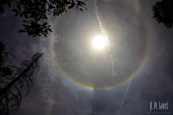 Rainbows  025