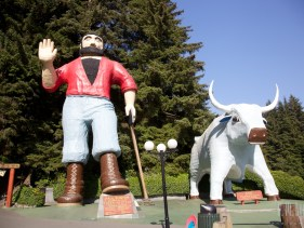 north redwoods  086