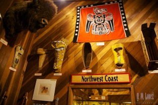 north redwoods  088
