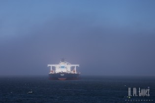 Victoria Ferry  015