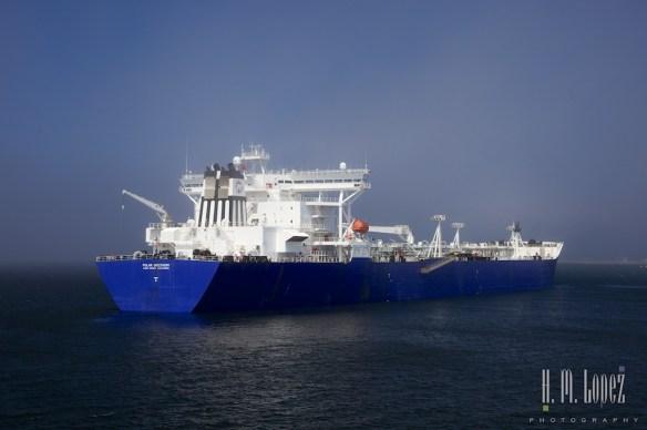 Victoria Ferry  016