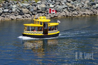 Victoria Ferry  022