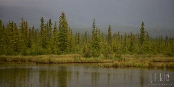 Banff  046